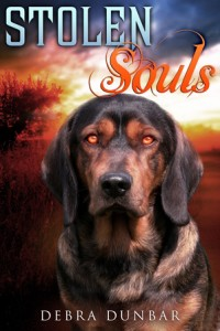 Book Cover: Stolen Souls
